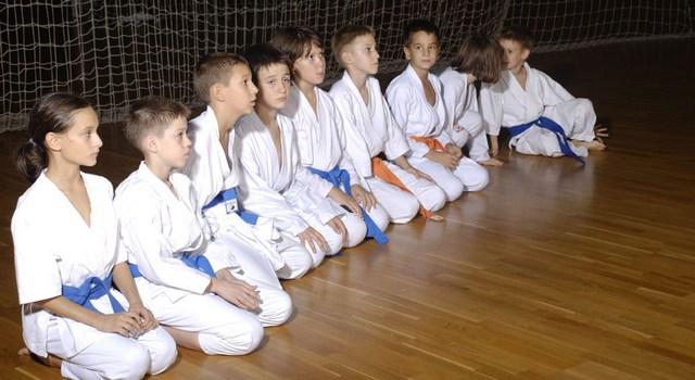 karate_klub_novi_ssad_pioniri_spens
