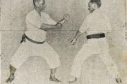 Šta je karate? Odakle je potekao?